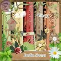 Kit Jardin secret