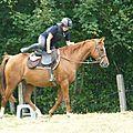 Jeux équestres manchots - parcours de pleine nature après-midi (282)