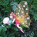 crista fée papillon (3)