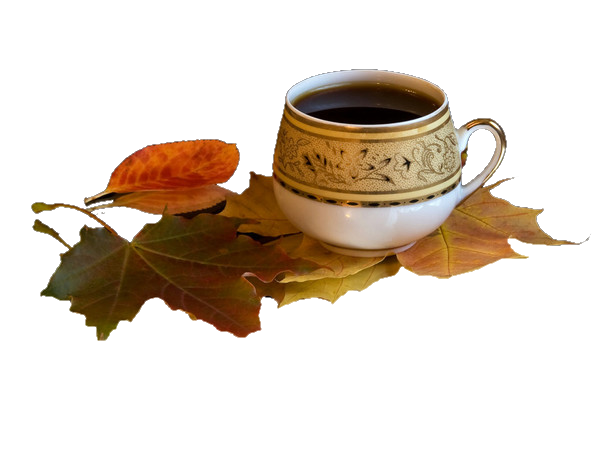 café 1