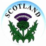 scottish_thistle (640x640)