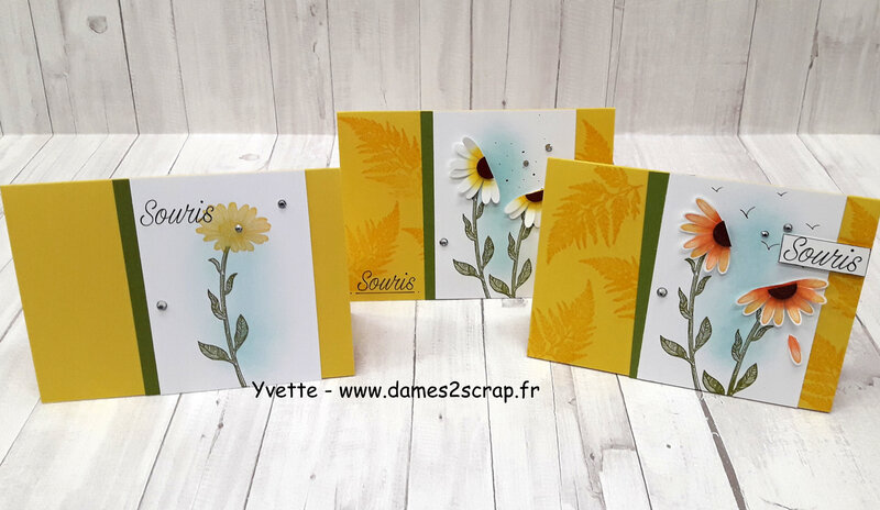 cartes marguerite 02