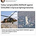 Caroline fourest diffuse une fake news sur la turquie... puis la supprime discrètement