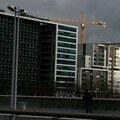 Grue - Paris - Mars 2007