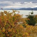 26 Lake Pukaki