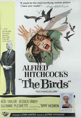 Les oiseaux (1962)