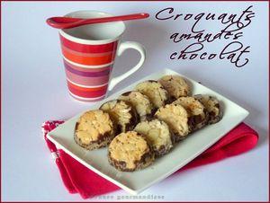 croquants amandes chocolat (13)