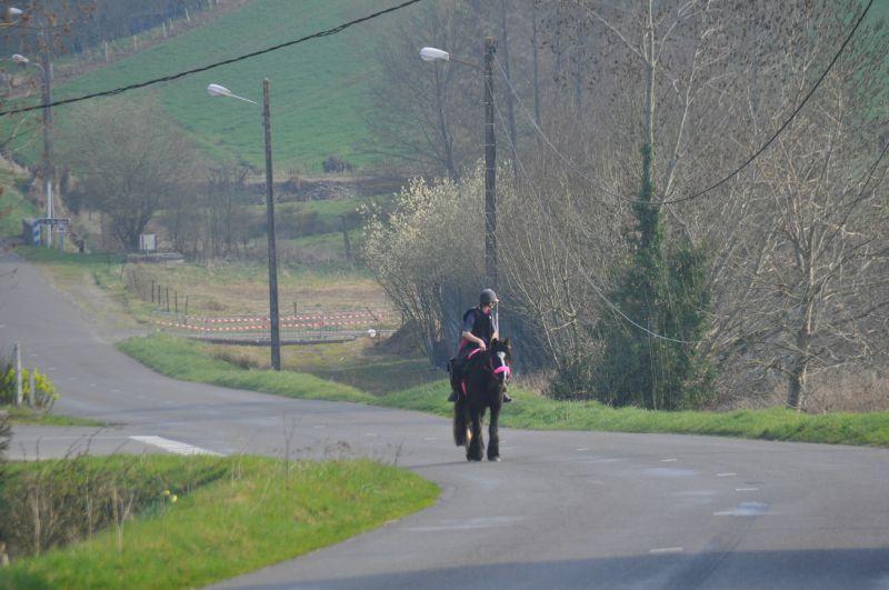 La Balade du Jambon - Balade à cheval dans le mortainais (49)