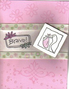 195__Bravo_bebe
