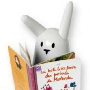 article_lapin