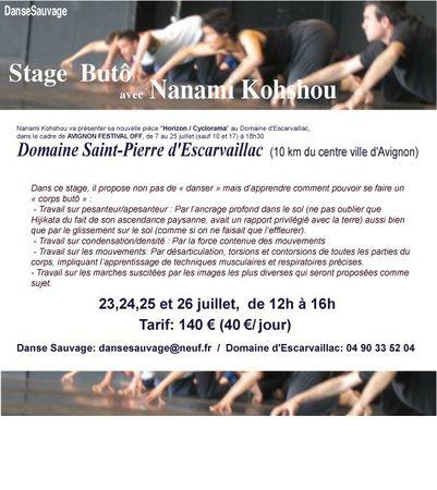 stage-2112-Avignonai