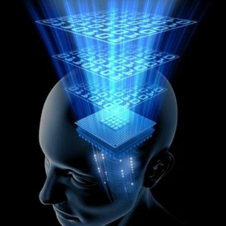 cerveau visualisation