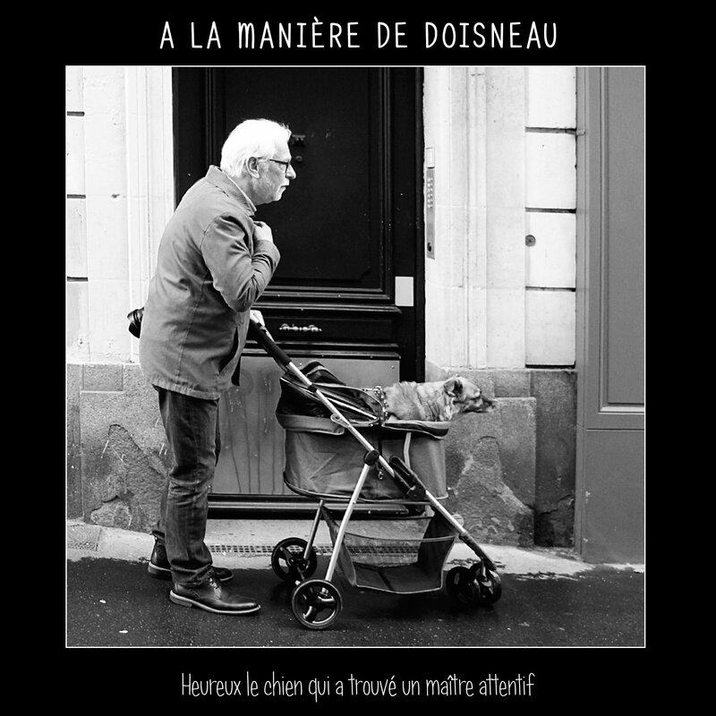 A la manière de Doisneau_Attentif