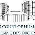 Arrêt contre la gpa rendu par la cour européenne des droits de l'homme le 24 janvier 2017