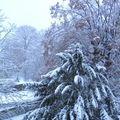 9 décembre / 1, sous la neige