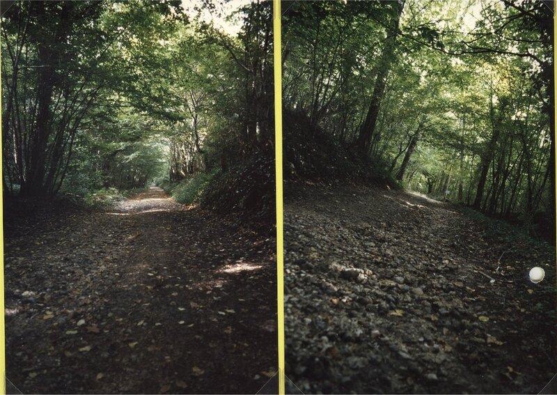 le chemin de foncrose au Clédier