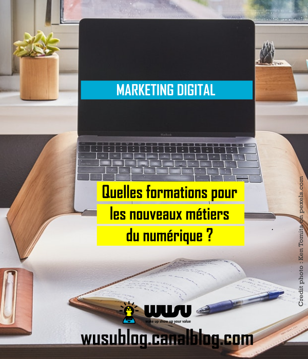 formation-metiers-marketing-digital-cameroun-wusu-winnie-ndjock-2018