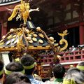Sanja matsuriー三社祭祭り