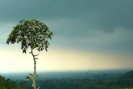 Singapour___Cambodge___Bali_294_