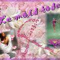 41 - Nanie - Le mois rose