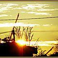Lever de soleil 1602155