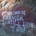 i love you chicken