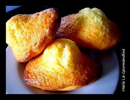 Mes_madeleines