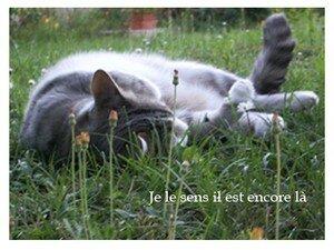 encore_la_