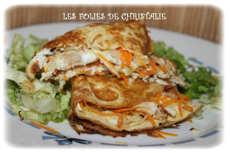 Omelettes chinoises 7