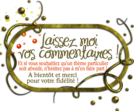 logo_commentaires
