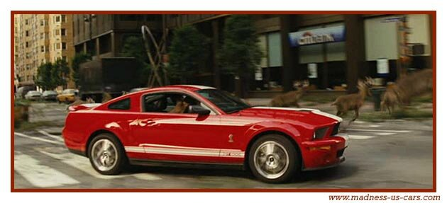 Ford Mustang Shelby GT500 dans New York