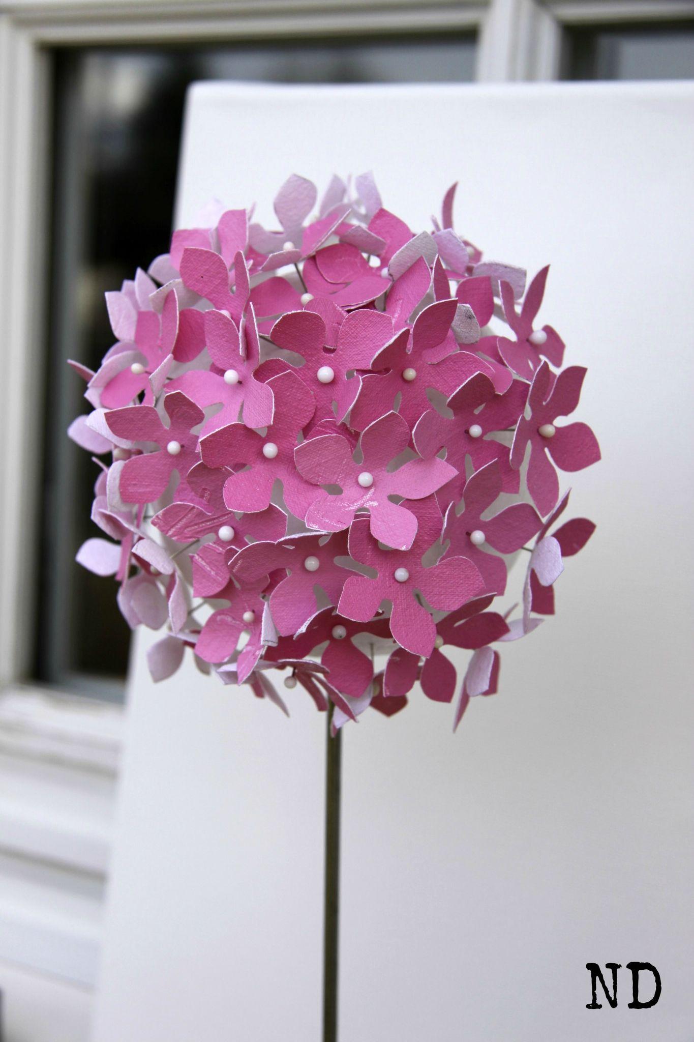fleur de mars1