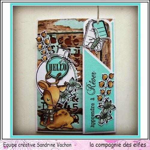 Carte et marque page Sandrine VACHON dt LCDE (1)