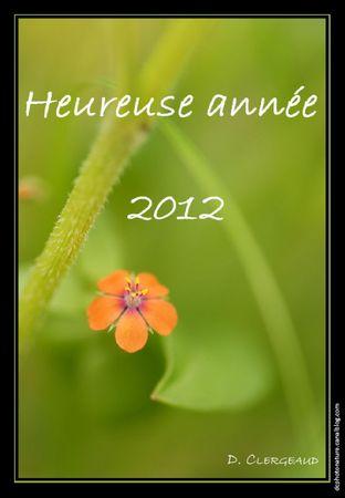 Heureuse année 2012