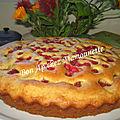 Gâteau aux fraises et groseilles du jardin et balade en normandie 50 et bretagne 35