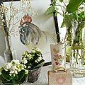 Coq - AF©Marimerveille - plantes vertes atelier