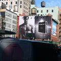 New York City 2007 Octobre - 268