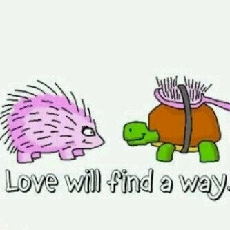 love-will-find-a-way