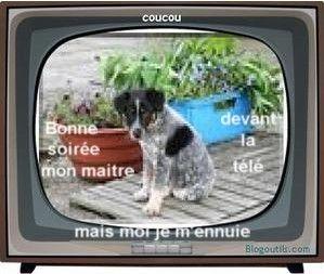 b_s_couc_modifi__blog_Pat