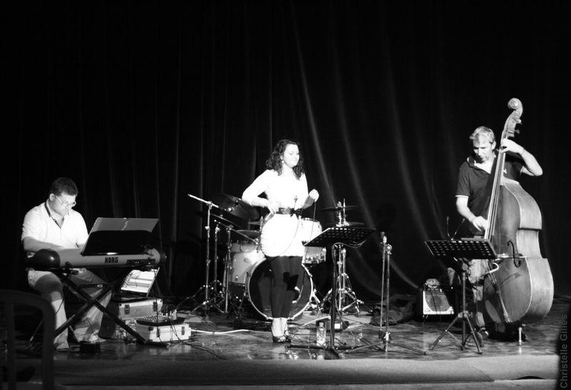concert ElectroFaune