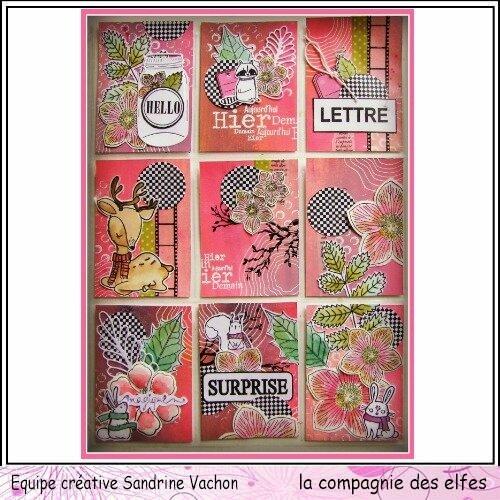 Pocket letter Sandrine VACHON janv dt LCDE (1)