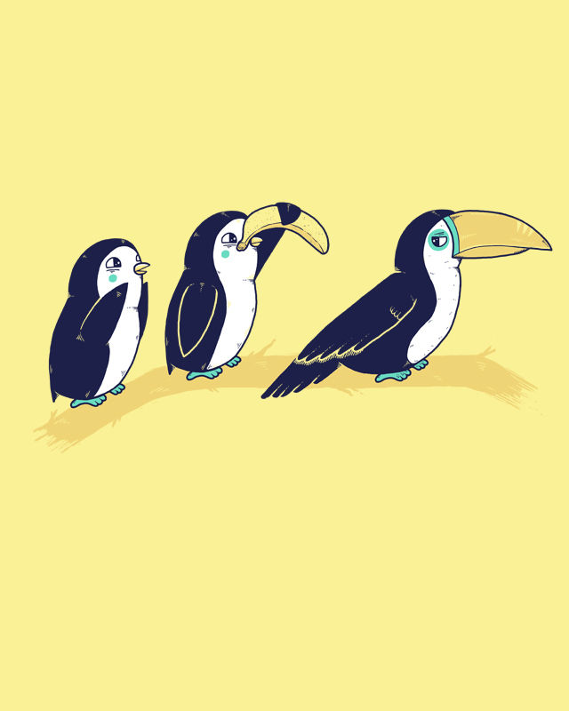 19_toucan2