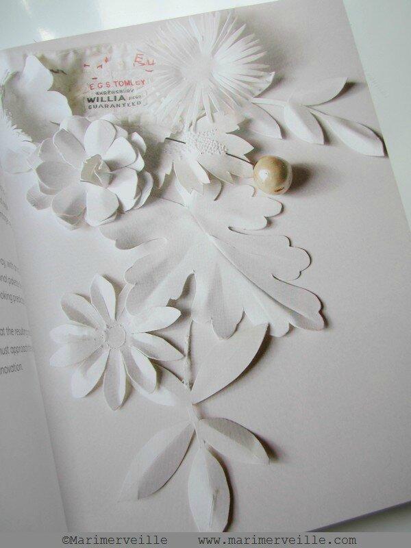 livre embellished 1