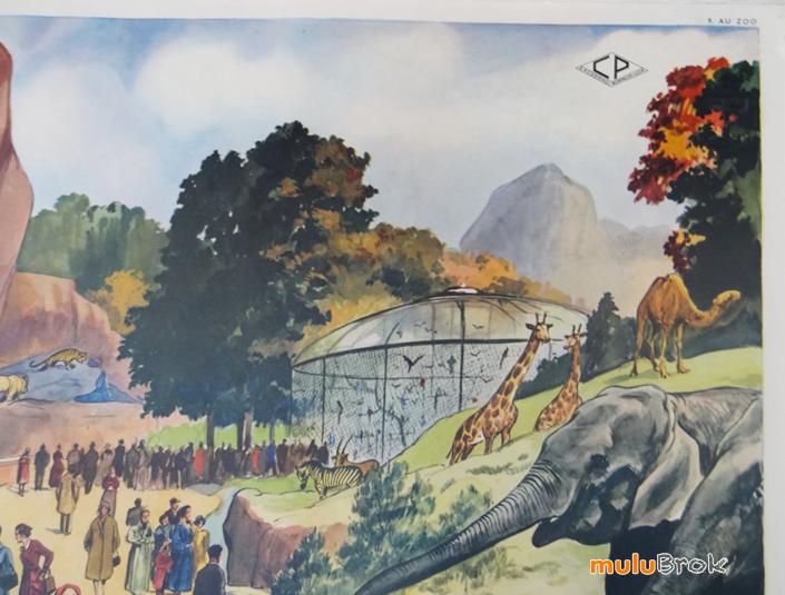 Affiche-LE-STADE-AU-ZOO-11-muluBrok