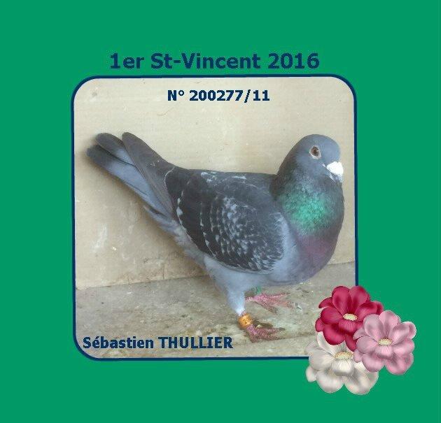 1er St-Vincent S Thullier