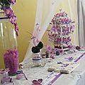 deco salle mariage theme papillon (13)