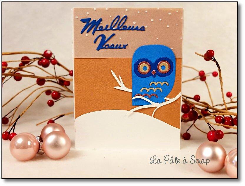 carte chouette Noël