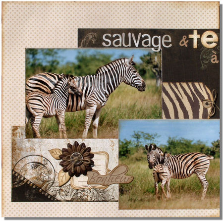 Sauvage_et_tende1