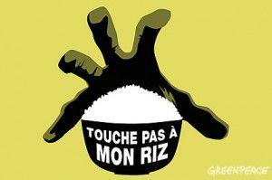 touche_pas_a_mon_riz_300x199
