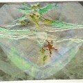 J'aime l'araignée et j'aime l'ortie (Victor Hugo) - Jacqueline F.